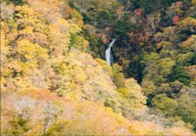 天風境(てんぷうきょう)から望む「幕滝」